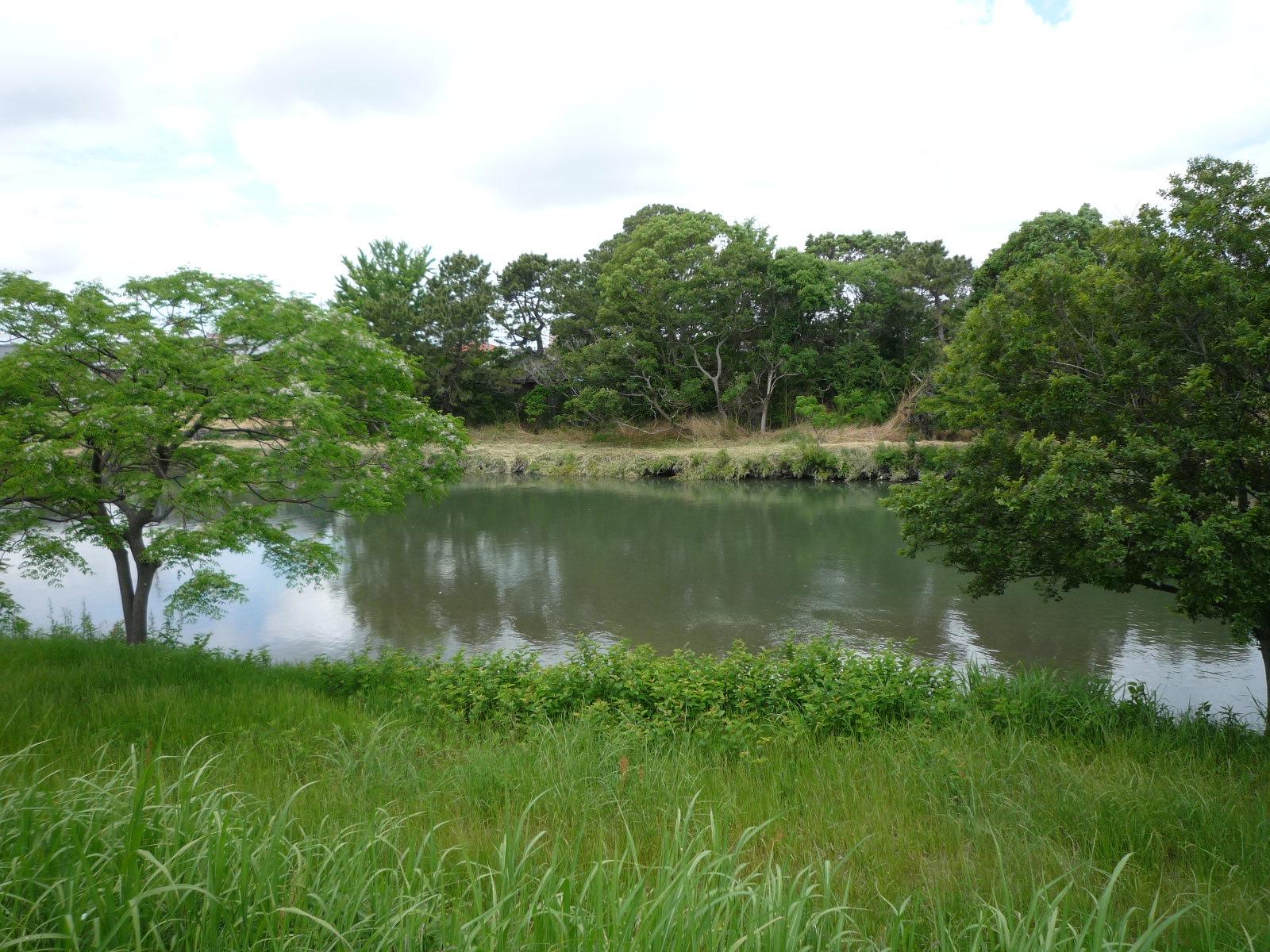 馬込川堤防沿いを歩いて中田島砂丘まで