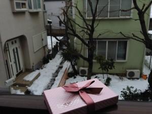 雪の日の訪問者